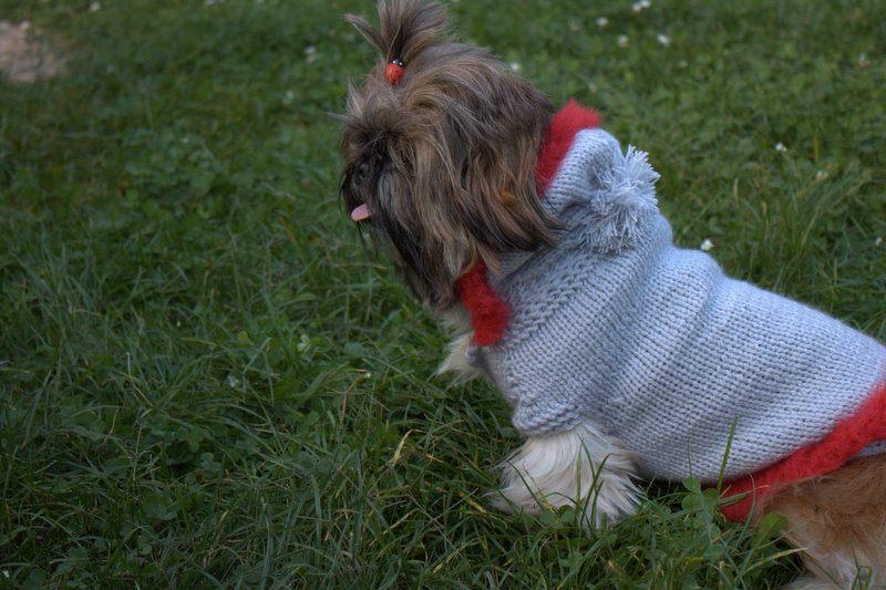 haine pentru catei tricotate