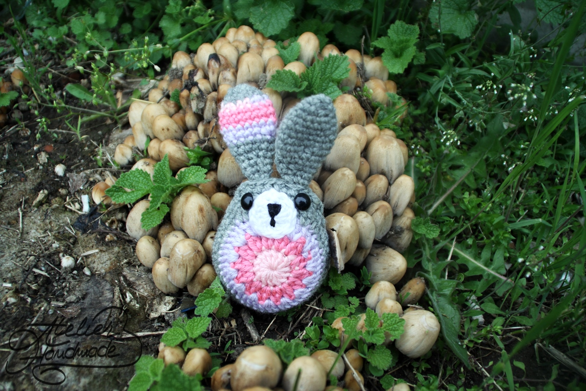 iepuras in ciuperci